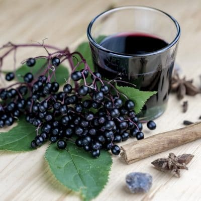 How to Make Elderberry Syrup from Fresh Elderberries the Safe Way
