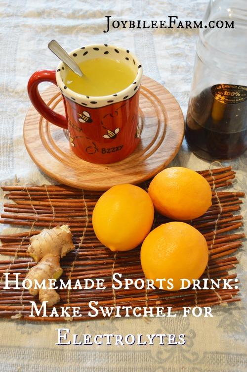 Homemade Sports Drink -- Switchel -- Joybilee Farm