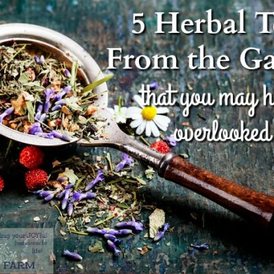5 Herbal Teas From the Garden