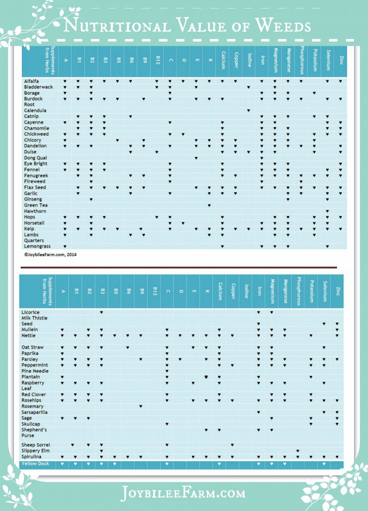 Nutritional Value of weeds Infographic
