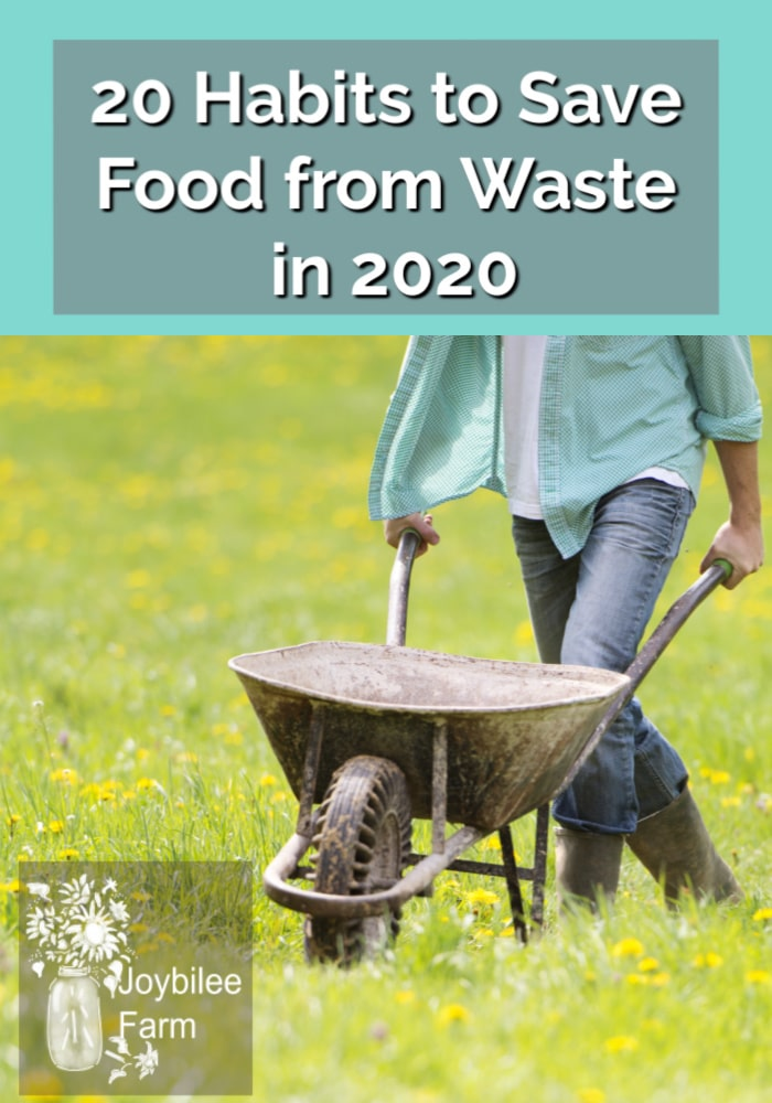 Abundance often breeds waste. Adopt these 20 habits and take steps to make 2020 be a no food wasted year on your homestead.