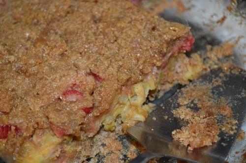 Rhubarb Square Recipe - Joybilee Farm
