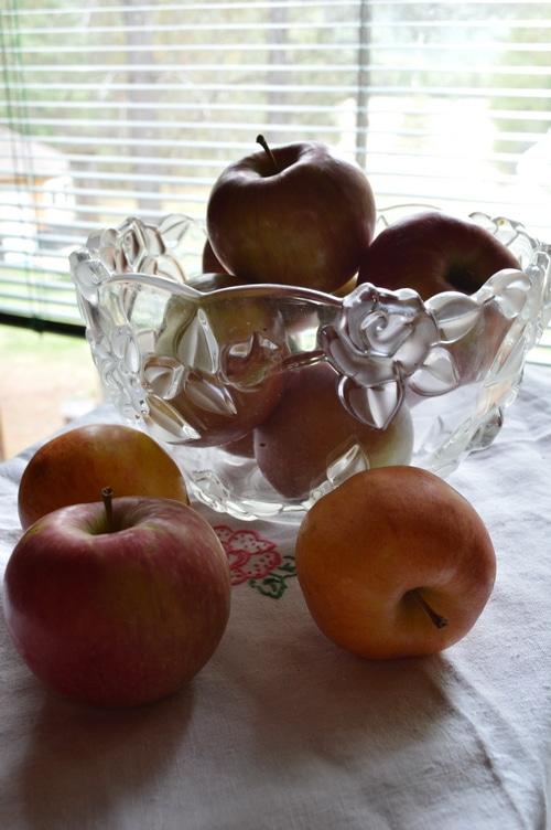 5 best kitchen gadgets to help preserve the harvest