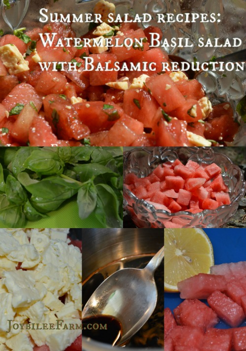 Summer Salad Recipes Watermelon Basil Salad - Joybilee Farm