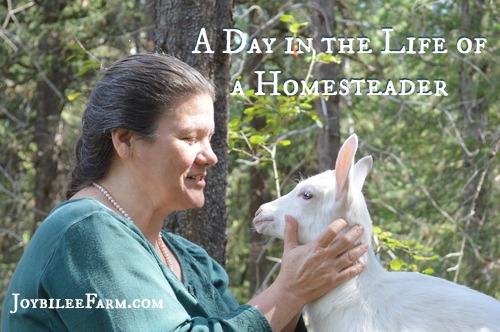 Real Life Homesteading -- Joybilee Farm