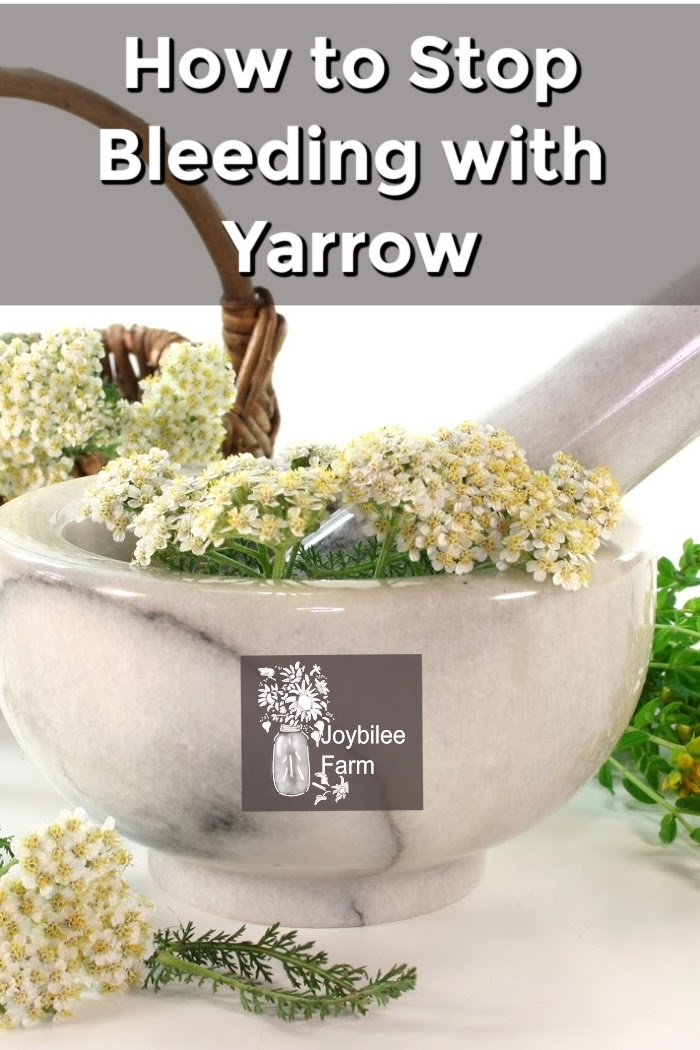 yarrow flowers in a mortar and pestle