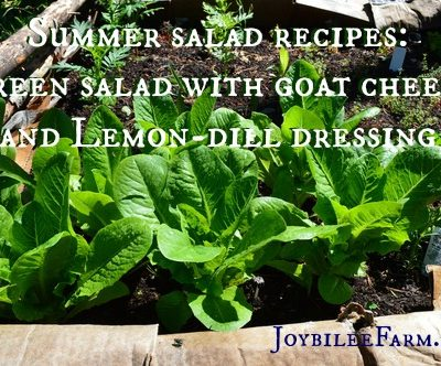 Summer Salad Recipes: Green Salad with Goat Cheese and Lemon-dill Dressing