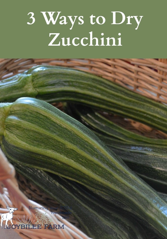 Take that prolific blessing of zucchini and dry some zucchini for winter. Don't waste the abundance. Here are more zucchini recipes