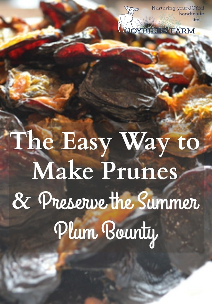 The easy way to make prunes and preserve the summer plum bounty....