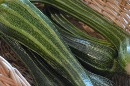 3 ways to dry zucchini -- Joybilee Farm