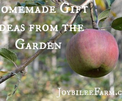 Homemade Gift Ideas from the Garden and Apple Pie Chai Jelly