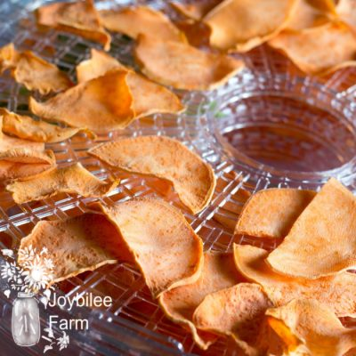 6 Steps to Turn Your Excess Produce Into Tasty Chips with a Food Dehydrator