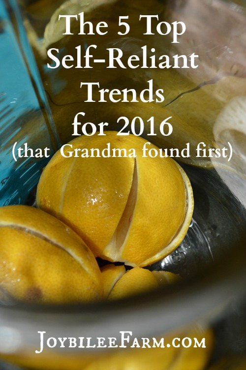 Pinterest recognizes these self-reliant trends in their Top 100 Trends for 2016. While it's true your grandma already knew about some of these self-reliant trends, we've gotten far ahead of grandma now. With the wealth of shared knowledge and social media sparkle these trends evolved into a movement. And it's a self-reliant, back-to-basics movement we can get excited about.
