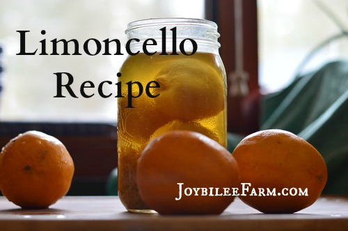 Limoncello is a slightly bitter, refreshing aperitif. Traditionally served icy cold, before meals to stimulate digestive juices, the bitter principle in limoncello is stimulating and carminative. Have a glass before a heavy meal, or serve it up with dessert. Your liver will thank you.
