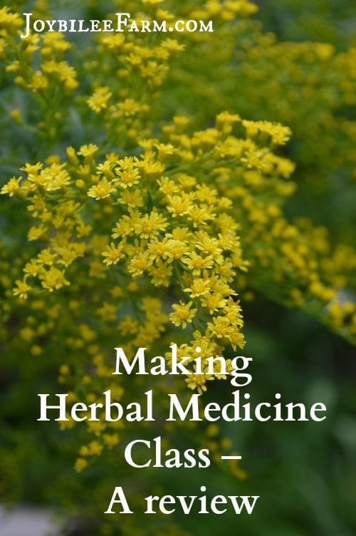 Making Herbal Medicine Review