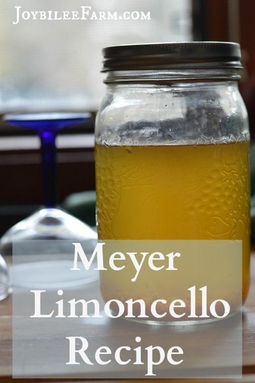 Meyer Limoncello Recipe