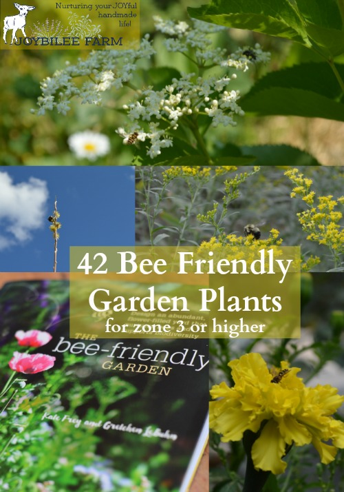 Things may improve if you transform your garden area with the bees in mind. According to Frey and LeBuhn in The Bee-Friendly Garden, native bee populations are in decline, just as colony collapse disorder is endangering imported honey bees. This in turn threatens the food security of the whole world. What is their solution to this cataclysmic threat? Create more native pollinator habitat in backyard gardens everywhere.