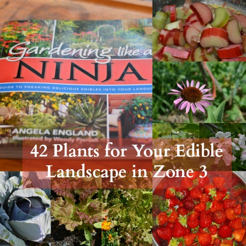 This book is for those who need tips to move from lawn maintenance to edible abundance. You'll find a crash course in garden design that will help you work out a plan for your specific circumstance, climate, hardiness zone, and eye sore areas that need help