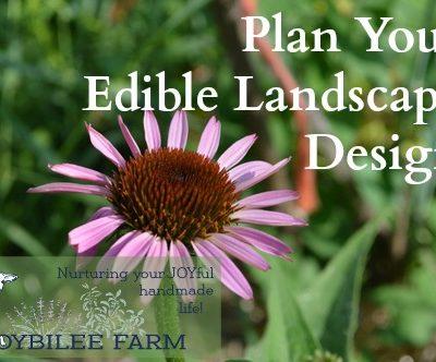 Plan Your Edible Landscape Design with a Little Help
