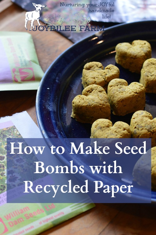 Plant the entire seed bomb on bare ground by digging a shallow hole and covering the seed bomb with 1/8th inch of soil. Keep moist at all times, while you are waiting for the seeds to germinate.
