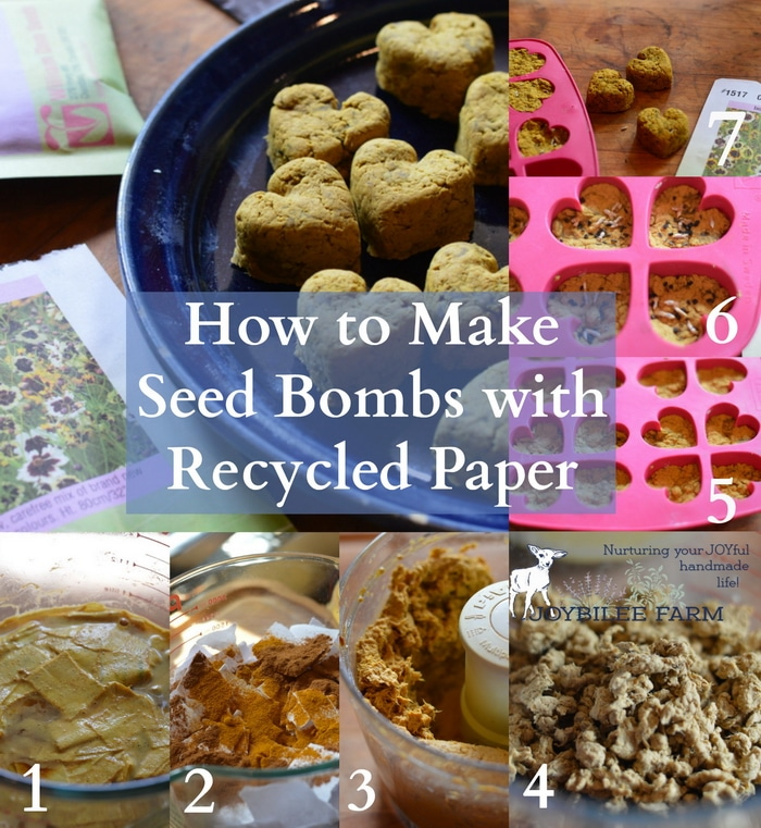 photo collage of making seed bombs