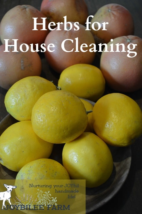 citrus for herbs house cleaning