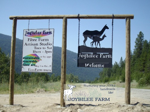 "Why did you name your farm ""Joybilee Farm""? This is why."