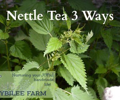 Nettle Tea Three Ways