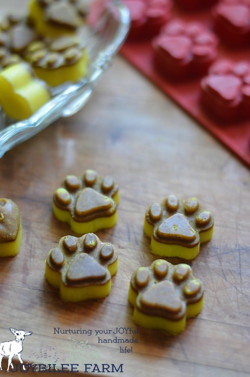 homemade turmeric chews for dogs and cats