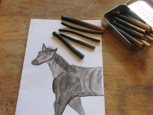 """Charcoal is one of the most widely used art mediums. Knowing how to make charcoal for drawing and sketching is a handy skill to have. Now you can make your own artist charcoal at home and gain the satisfaction of saying, """"I made it myself."""" Plus your willow charcoal is of higher quality and more sustainable than anything you can buy at your artist supply store."""