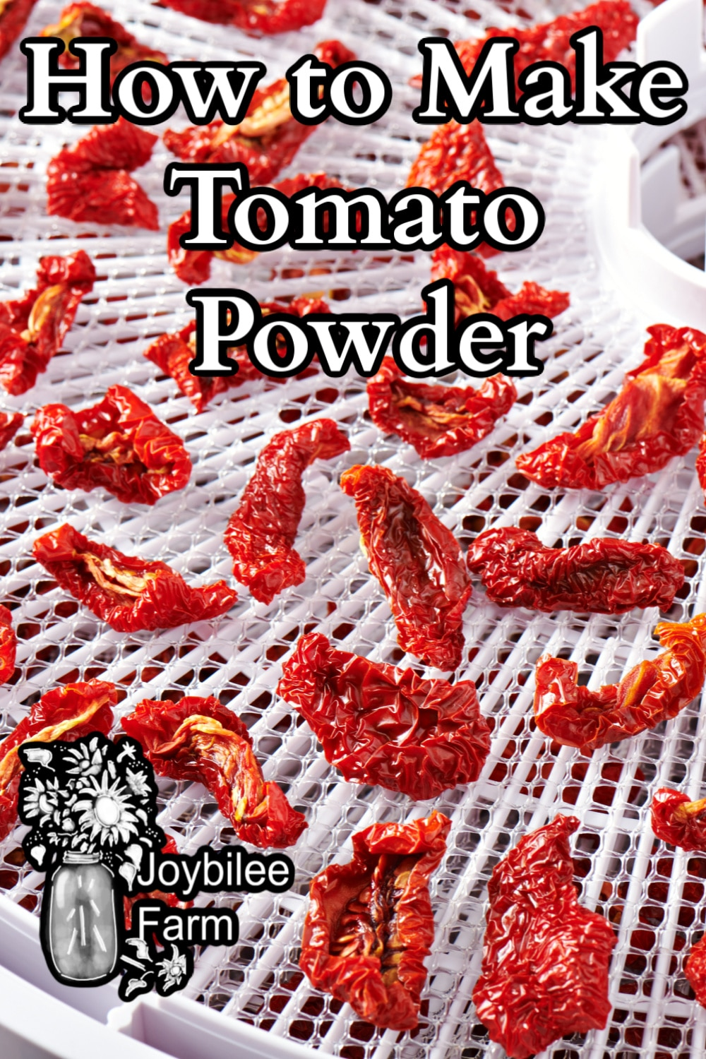 Dried tomato slices on a tray dryer