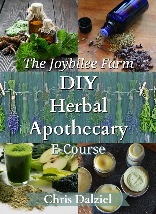 Enroll in the DIY Herbal Apothecary Ecourse now.