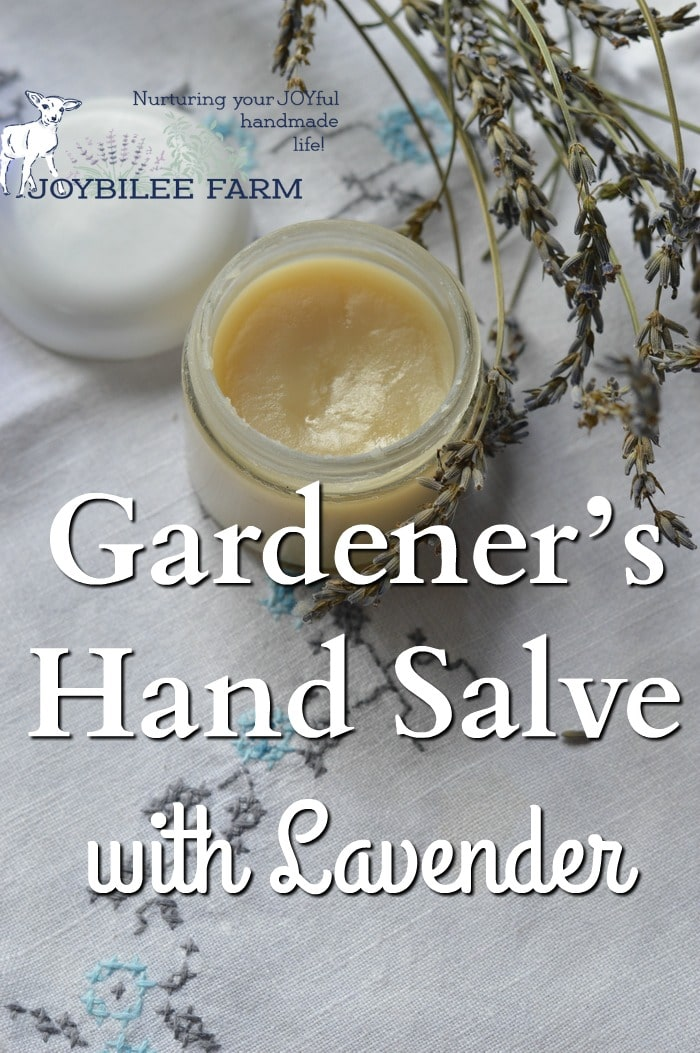 Lavender hand salve in a container by dried lavender flowers