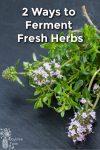 Fresh herbs on a slate board