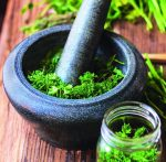fresh herbs in a mortar and glass jar