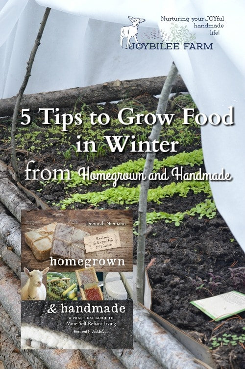 Grow Food in Winter with these tips