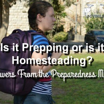 Is it Preparedness or is it Homesteading?