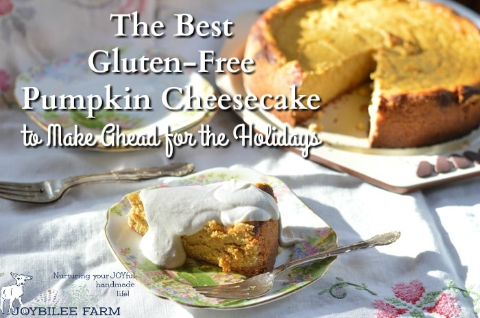 Gluten-free pumpkin cheesecake that can b