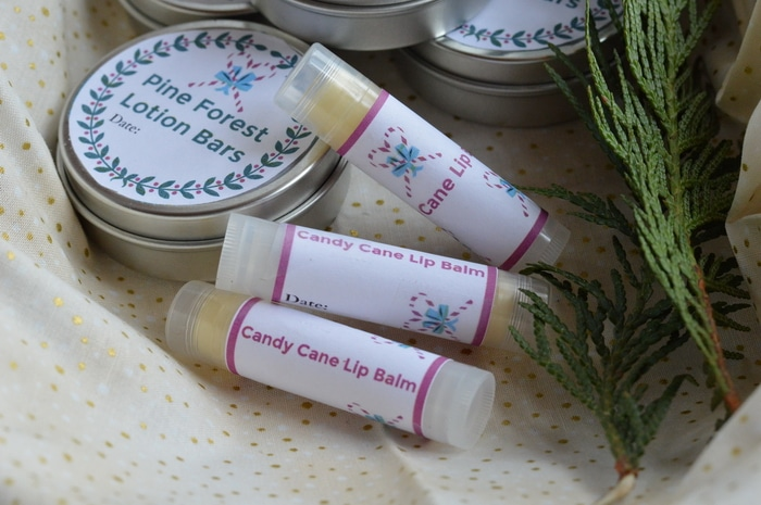 candy cane lipbalm, with cedar branches and a lotion bar in the background.
