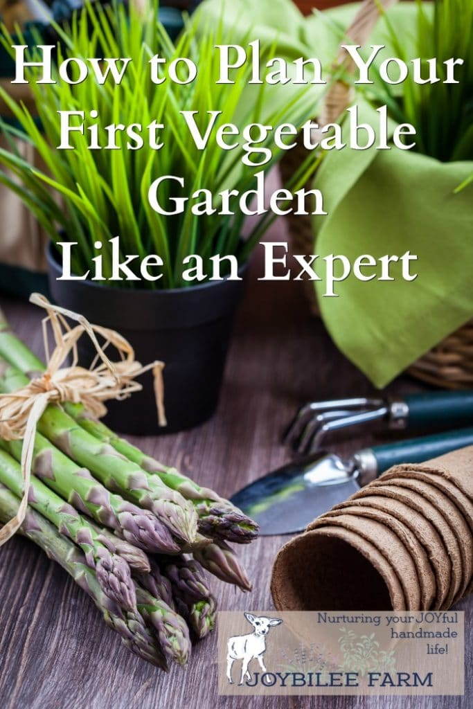 How to plan a garden that can feed your family for months, even if you are a beginner.