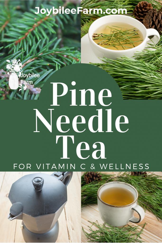 Pine and tea
