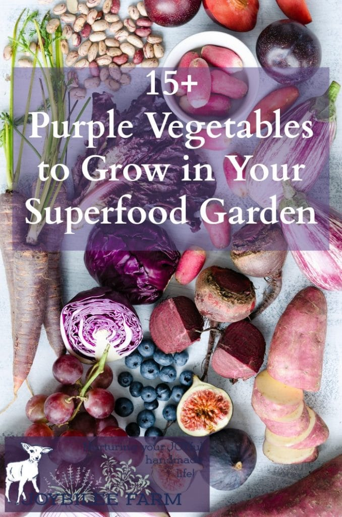 Purple vegetables are rich in anthocyanins, an antioxidant that gives the red, blue, and purple pigment to plants. Anthocyanins are known to fight free radical damage at the cellular level, offering antiviral, anti-inflammatory, and anticancer benefits. Getting more purple vegetables in your garden and into your meals is an easy way to increase the nutrition and health of your daily meals.