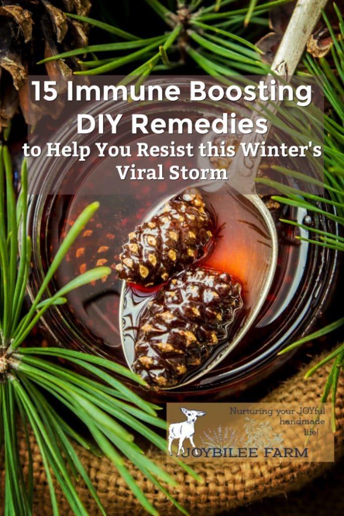 Immune Boosting Remedies - pine tea