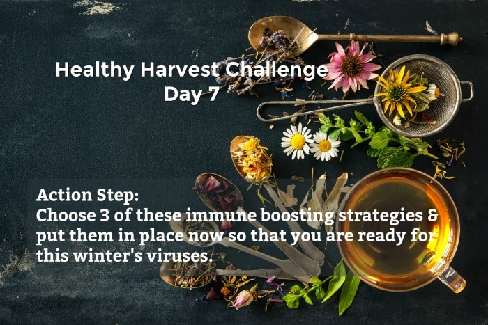 Use these 15 DIY immune boosting remedies to prepare your body for this winter's viral storm surge. Your health is in your hands.