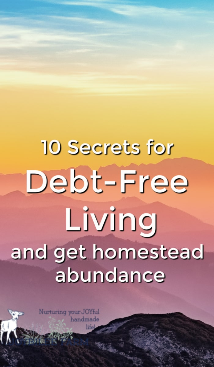 Debt free living is a lifestyle is full of homestead abundance.