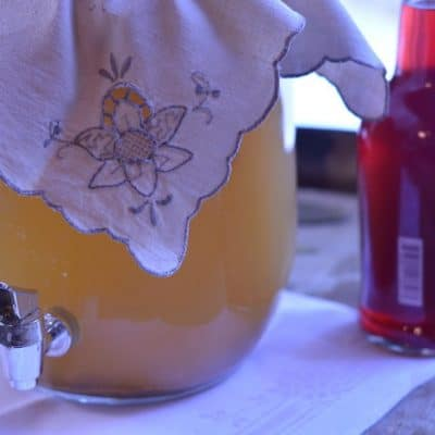 Let Second Fermentation Kombucha Satisfy Your Thirst and Replace Your Daily Soda