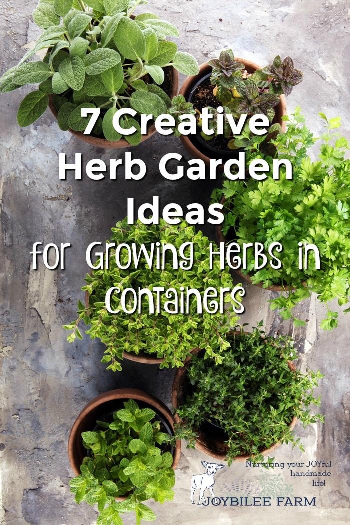Herbs in Clay pots