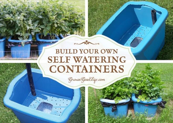 Self watering herb garden