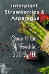 Strawberries & Asparagus on slate