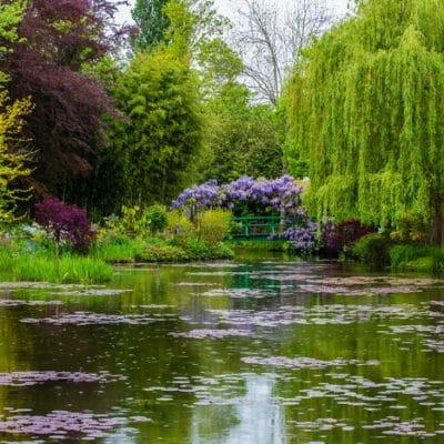 13 Benefits of Visiting a Botanical Garden Even If You ARE a Gardener